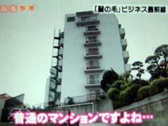 関西ローカルテレビでかつらWithが紹介